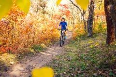 El Biking en el bosque foto de archivo