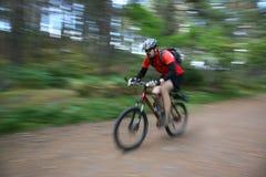 El Biking en el bosque Fotografía de archivo libre de regalías