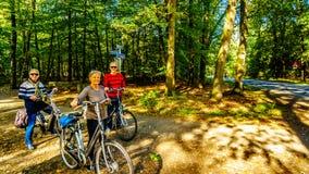 El Biking a través de los campos y de los bosques del brezo en la reserva de naturaleza de Hoge Veluwe foto de archivo libre de regalías