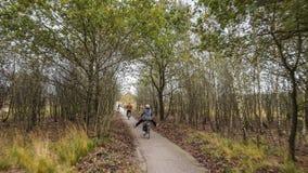 El Biking a través de los campos y de los bosques fotos de archivo