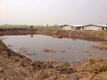 El biogás cubrió la laguna Foto de archivo libre de regalías