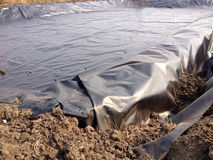 El biogás cubrió la laguna Fotos de archivo libres de regalías