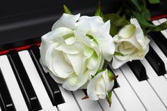 El blanco artificial se levantó en piano Imagenes de archivo