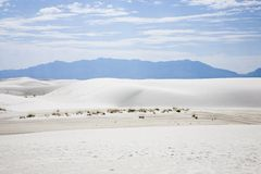 El blanco enarena el monumento nacional Fotos de archivo libres de regalías