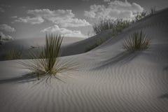 El blanco enarena New México Imagenes de archivo