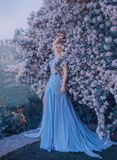 El Blonde, con un peinado elegante hermoso, camina en un jardín floreciente fabuloso Princesa en un vestido gris-azul largo E foto de archivo