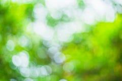 El bokeh verde borroso extracto sale del fondo Foto de archivo libre de regalías