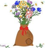 El bolso con las hierbas - manzanilla, angustifolium, aciano, campánula, hypericum y abejas stock de ilustración