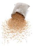 El bolso dispersado con trigo Imagen de archivo libre de regalías