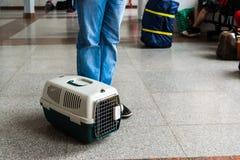 El bolso para los animales domésticos que llevan está alrededor de las piernas del adolescente Fotografía de archivo