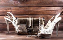 El bolso y los zapatos de las mujeres elegantes Fotografía de archivo libre de regalías