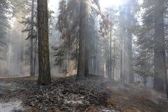 El borrar en el humo Imagen de archivo libre de regalías