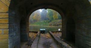 El bosque aéreo de la charca del otoño del parque ducks cisnes almacen de video