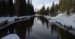 El bosque alinea una pequeña corriente en invierno con nieve y nubes metrajes