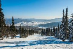 El bosque de la montaña arrastra la cuesta del esquí Fotografía de archivo