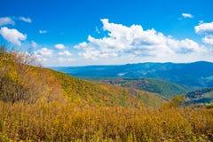El bosque del Estado de Monongahela de un botón Spruce pasa por alto Fotos de archivo libres de regalías