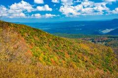 El bosque del Estado de Monongahela de un botón Spruce pasa por alto Imagen de archivo