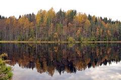 El bosque del otoño reflejó en la superficie del espejo del agua del lago Imagen de archivo libre de regalías
