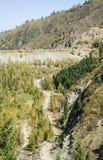 El bosque del pino de montañas en tiempo soleado Viaje y aventura en verano u otoño El río de la montaña El concepto de la libert imagenes de archivo