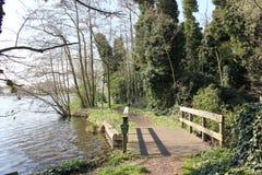 El bosque holandés Imagen de archivo