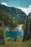 El bosque hundido del lago Kaindy El lago Kaindy, significando el ` del lago del árbol de abedul del ` es un lago metro-largo 400 Fotos de archivo