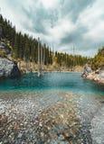 El bosque hundido del lago Kaindy El lago Kaindy, significando el ` del lago del árbol de abedul del ` es un lago metro-largo 400 Foto de archivo libre de regalías