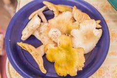 El bosque prolifera rápidamente para la venta en el mercado local de la comida Imagenes de archivo
