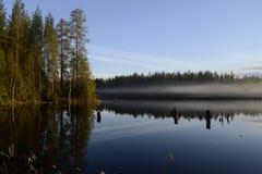 El bosque se refleja en el agua fotografía de archivo