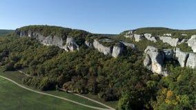 El bosque y las montañas coníferos ajardinan verde sereno del verano del paisaje del viaje tiro Opinión panorámica del abejón aér metrajes