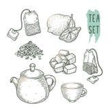 El bosquejo de los elementos del té incluye la tetera, bolsitas de té, taza, azúcar, bergamota y seca las hojas Imagenes de archivo