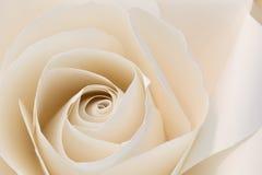 El bouganvilla de papel de Flower Foto de archivo libre de regalías