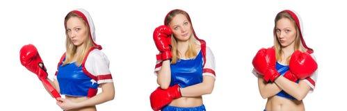 El boxeador de sexo femenino aislado en el fondo blanco Fotos de archivo