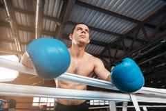 El boxeador en guantes azules se sostiene en las cuerdas imágenes de archivo libres de regalías