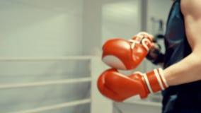 El boxeador está poniendo guantes de los boxeadores en sus manos que se preparan al palo con el rival almacen de video