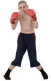 El boxeador fino en guantes Imagen de archivo libre de regalías