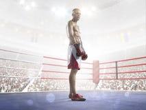 El boxeador profesional está entrenando en la arena magnífica fotografía de archivo libre de regalías