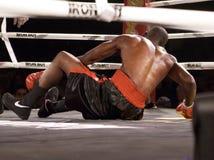 El boxeo profesional golpea abajo Fotografía de archivo libre de regalías