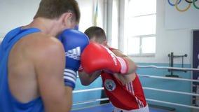 El boxeo profesional, sportsmans se batió en entrenar antes de campeonato en el anillo en el club de deportes almacen de metraje de vídeo