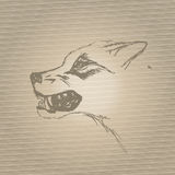 El bozal del lobo del gruñido del bosquejo Imagen de archivo libre de regalías