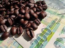 El Brasil asó los granos de café colocados en billetes de banco imágenes de archivo libres de regalías