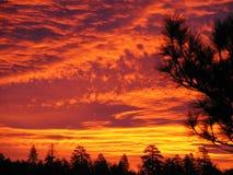 El brillar intensamente de la salida del sol Imagen de archivo libre de regalías