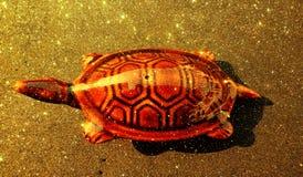 El brillo texturizó la plantilla abstracta del fondo de la tortuga, diseño de la plantilla de los gráficos imagen de archivo libre de regalías