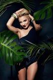 El bronceado atractivo de la palma de la selva del maquillaje de la mujer de la belleza sombrea la playa Imagen de archivo libre de regalías