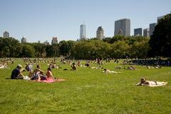 El broncear en Central Park Imagen de archivo