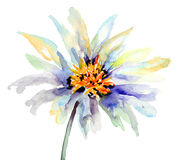 El brote de la flor Fotos de archivo libres de regalías