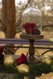 El brote de una rosa roja, mintiendo en una placa de oro y un spoo de oro Fotos de archivo libres de regalías