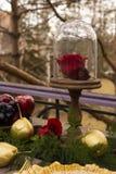 El brote de una rosa roja, mintiendo en una placa de oro y un spoo de oro Imagen de archivo