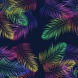 El brote tropical sale palmf de las flores de neón