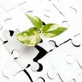 El brote verde de la tierra hace su manera con el rompecabezas Imagen de archivo libre de regalías