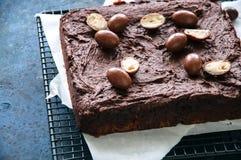 El brownie oscuro del chocolate ajusta en un estante de rejilla adornado con el cre Fotos de archivo libres de regalías